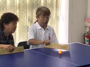 【画像】卓球バレー