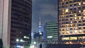 【画像】ソウルの夜景1