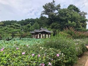 【画像】船橋荘1