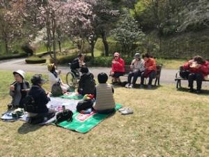 【画像】桜の木の下でピクニック
