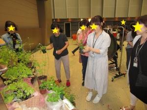 【画像】ふうわの庭 2